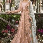 ASIM JOFA | NAUBAHAR CHIFFON COLLECTION | AJN-06