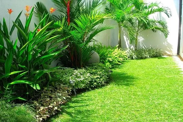 25 Landscaping House In Sri Lanka Pictures And Ideas On Pro Landscape