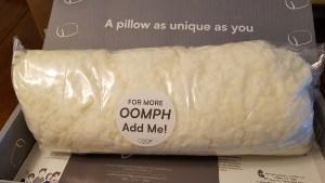 Coop Home Goods foam