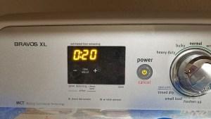 Coop Home Goods pillow in dryer