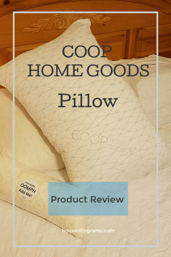 Coop Home Goods Pillow Product Review from HouseofIngrams.com
