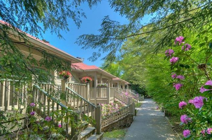 Chestnut Lodge Mountain Lake Lodge | Kellerman's Mountain House | Dirty Dancing Resort