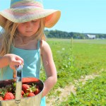 WIN Family of Four Passes to Brooks Farms' Summer Fun Festival!