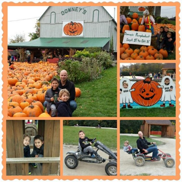 Downey's Farm Visit Caledon, Ontario Day Trip Itinerary