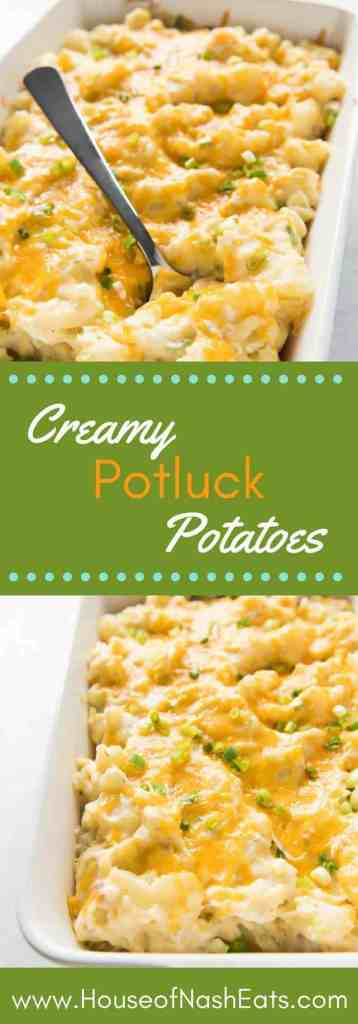 Creamy Potluck Potatoes are total comfort food! Cheesy and savory, this is the perfect casserole side dish to serve a crowd, whether it's a holiday dinner, family reunion, or church potluck!