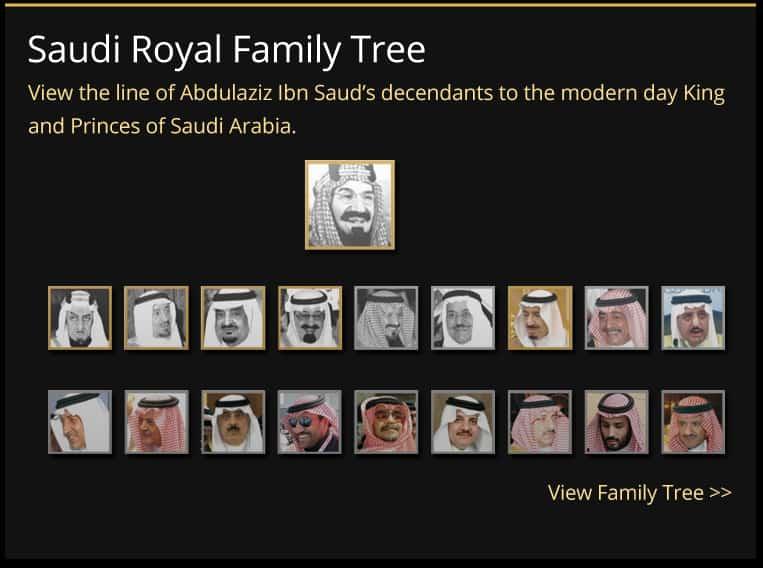 Fahd Abdul Bin Aziz King