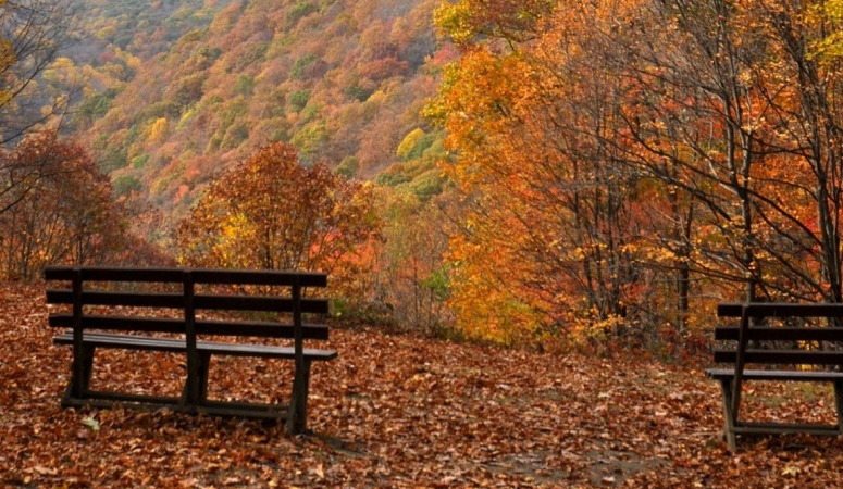 Fall Bucket List {Why I LOVE Fall in WV}