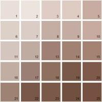 Benjamin Moore Paint Colors - Brown Palette 02 | House ...