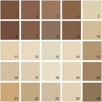 Brown Color Swatch | www.pixshark.com - Images Galleries ...