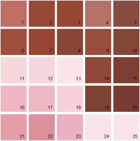 Benjamin Moore Red House Paint Colors Palette 10
