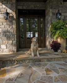 Pet Friendly Homes House Design Dogs Cats