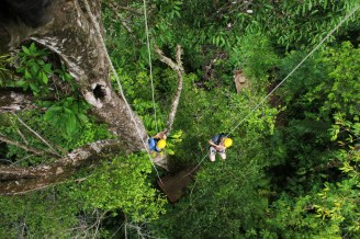 Charlie and Luke tree climbing at Hacienda Baru, Costa Rica