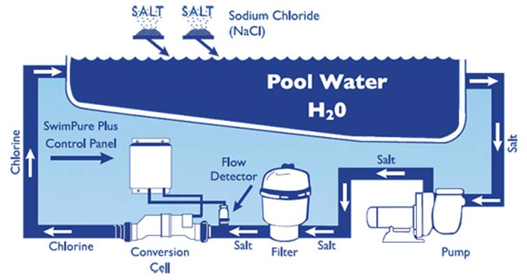 Looking after a salt water swimming pool house sitting skills Swimming pool water flow diagram