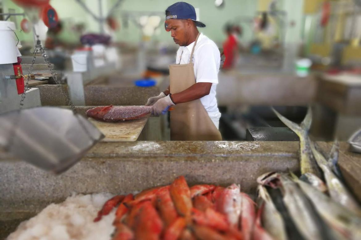 Kingstown Fish Market, Caribbean