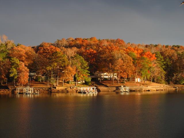 Lewis Smith Lake Beauty