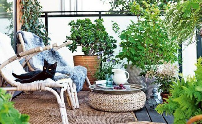 Small And Cozy Bohemian Outdoor Spaces House Design And