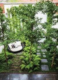 22 Shady And Fresh Gardens To Urban Jungle Ideas