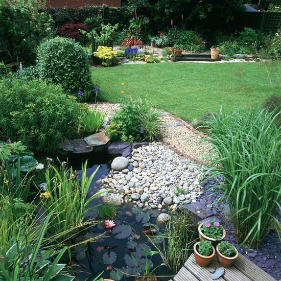 wildlife pond surrounded pebbles