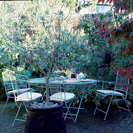Garden  Take a tour around a