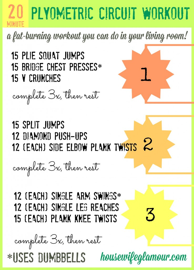 at home plyometric circuit workout cover 738x1024