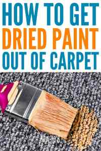 How To Get Dried Paint Out Of Carpet (along with other ...