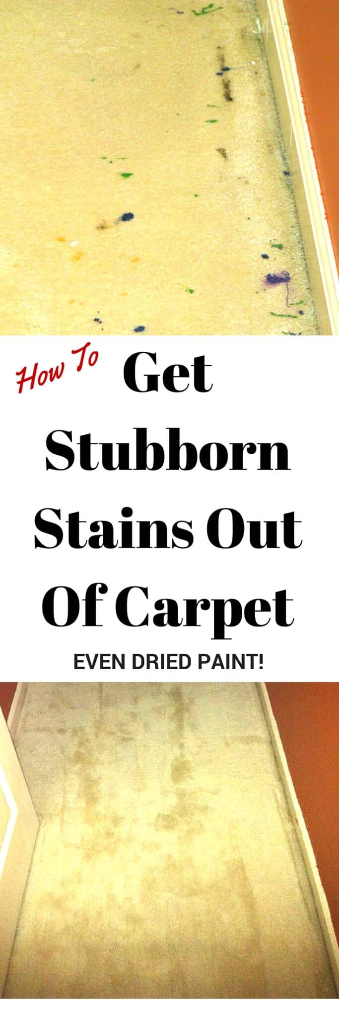 Here S How To Get Dried Paint Spilled Coffee Pet Messes And Other Mystery