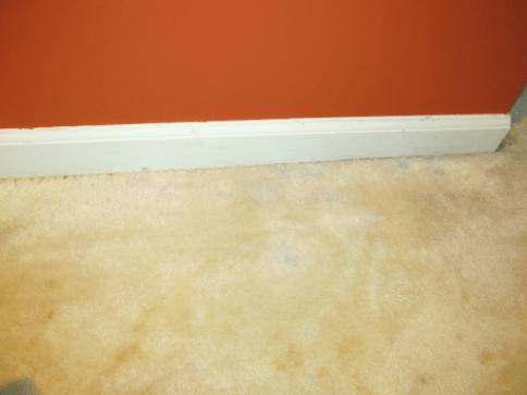 Remove Latex Paint From Carpet