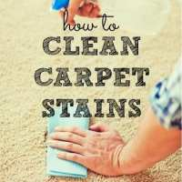 How To Clean Carpet Stains - Housewife How-To's