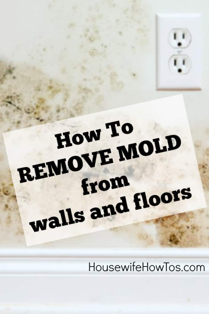 How To Remove Mold From Walls  Housewife HowTos