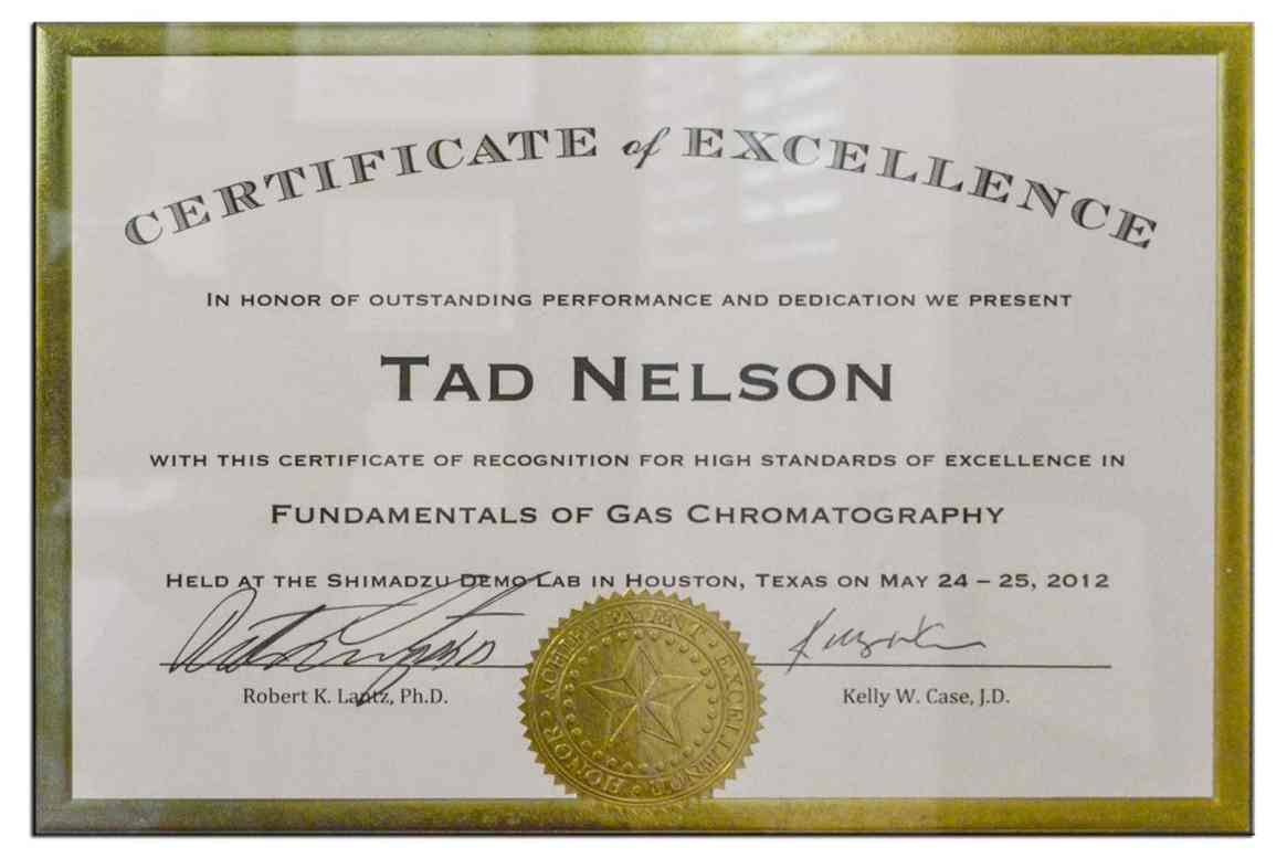 Educational training certificate: Fundamentals of Gas Chromatography