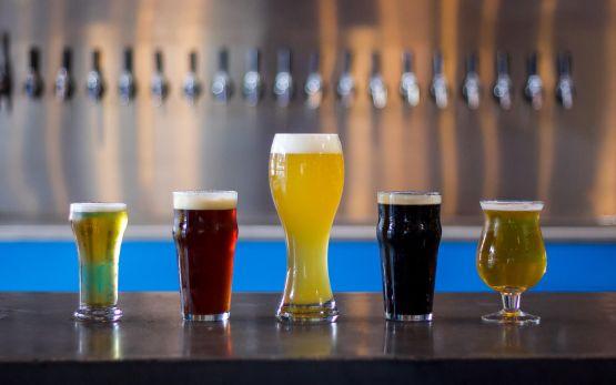 beers at Holler Brewery