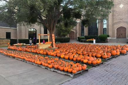 FUMC Kicks Off Fall Season with Annual Pumpkin Patch
