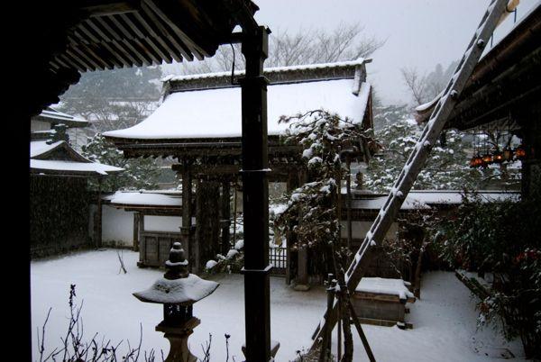 Viaje a Japon: Templo Koyasan en invierno