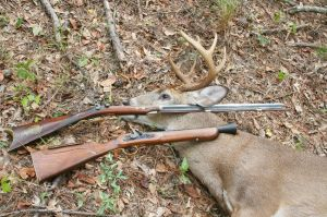 Selden rifle and Young Blunderbuss took this GA deer with round-ball loads.
