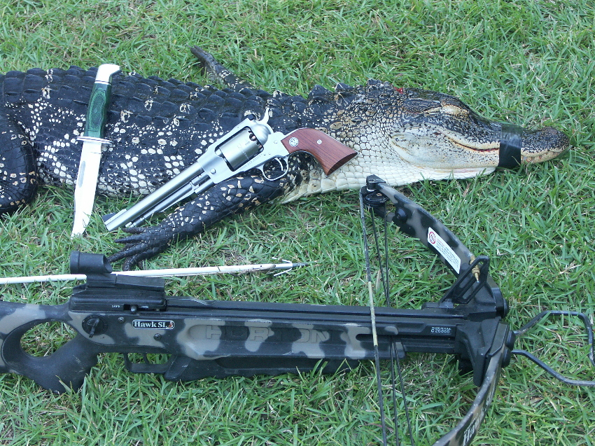 Alligator Hunting, Cleaning and Cooking Featured on Sept. 5 (3/4)
