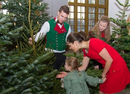 Ruotsin kruununprinsessa Victoria ja prinsessa Estelle vastaanottamassa joulukuusia, kuninkaalliset, Hovikirjeenvaihtaja