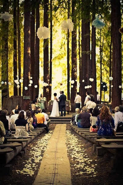 wedding in the woods!
