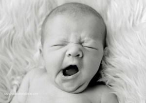 Newborn photo via Shutterbox Photos