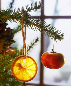 These eco-friendly Christmas tree ornaments can be tossed in the compost pile after the holidays pass. Get the tutorial at Good Housekeeping »