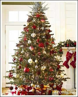 Bunch of different Christmas tree ideas on webpage.
