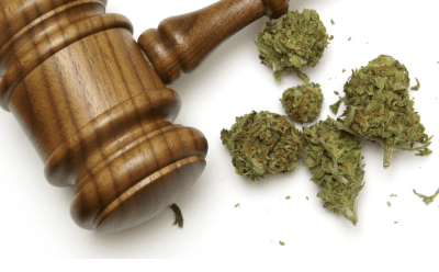 Laws To Regulate Marijuana Begin