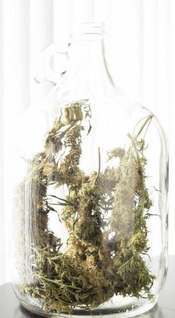 How To Make Marijuana Weed Wine - THC Wine Recipe