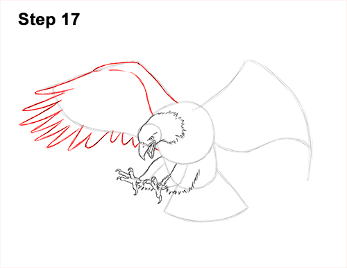 How to Draw a Bald Eagle (Flying/Hunting) VIDEO & Step-by