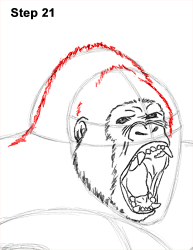 How to Draw a Gorilla (Agressive Stance)