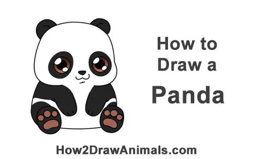 How to Draw a Panda Bear (Cartoon) VIDEO & Step-by-Step