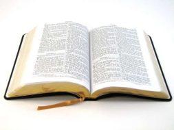shocking Bible verses
