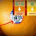 certified USDA-organic