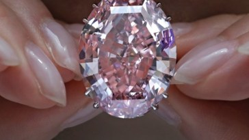 South Africa's Pink Diamond Breaks World Record for Most Expensive Jewelry Sold