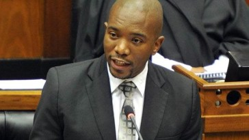 """""""Zuma's Cows Living Better Than South Africans""""- Maiman [Watch Video]"""