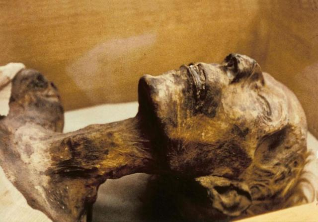 ancient egyptian mummies